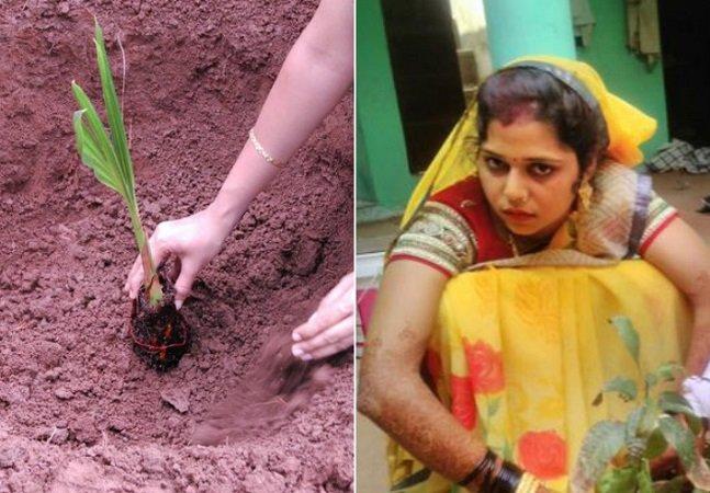 Em vez de ouro, como manda a tradição, indiana pediu 10 mil árvores de presente de casamento