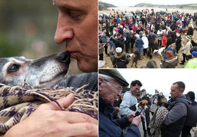 Centenas de pessoas solidárias se juntaram a este cão em sua última caminhada pela praia