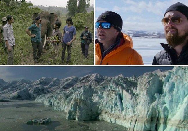 Documentário de DiCaprio sobre aquecimento global está disponível online gratuitamente