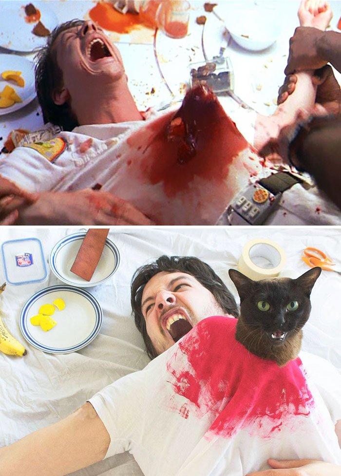 gatos_filmes-1