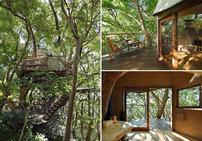 Maior 'casa na árvore' do Japão, em Atami, vai te deixar de queixo caído