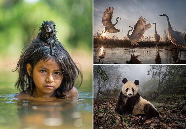 National Geographic anuncia as melhores fotografias de 2016