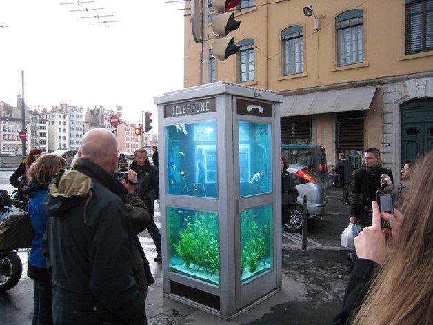 benedetto-bufalino-phone-booth-aquarium-designboom01