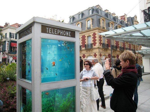 benedetto-bufalino-phone-booth-aquarium-designboom02