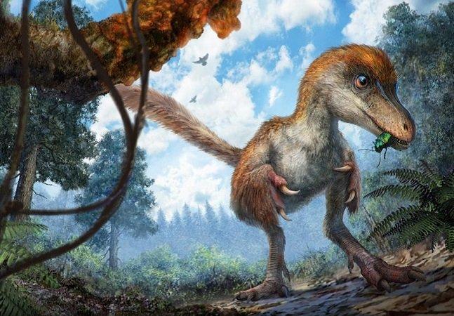 Cauda de dinossauro com 99 milhões de anos é encontrada preservada em âmbar