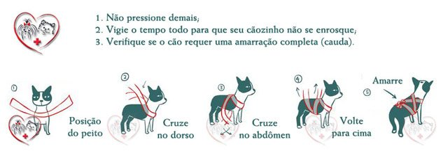 dog-interna