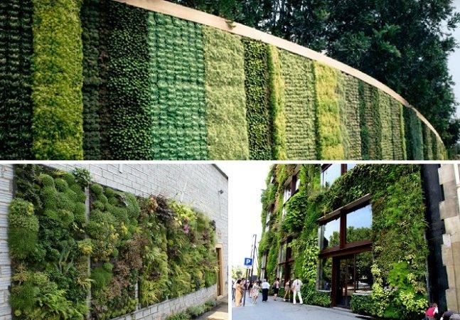 Paris anuncia projetos para criar 100 hectares de fachadas e coberturas verdes