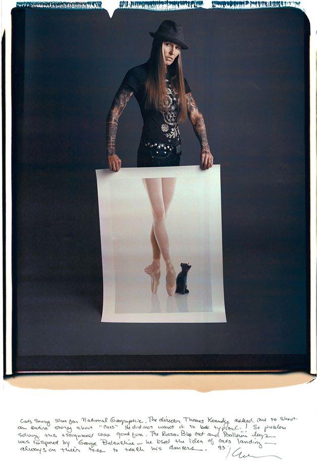 Karen Kuehn - O gato e a bailarina