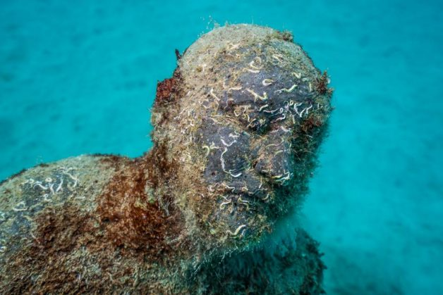 museo-atlantico_lanzarote_hybrid-forest_growth_04438_jason-decaires-taylor_sculpture