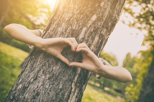 Heart-shape for the nature.