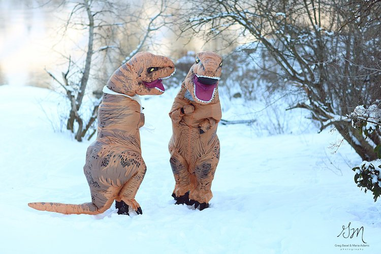 gm-photography-trex-engagement-9
