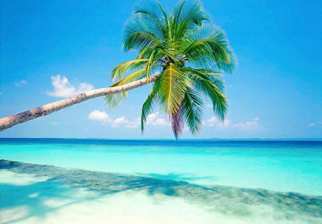 Que tal ganhar para viver em uma ilha particular no Caribe?