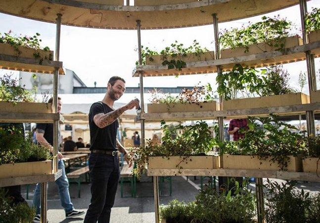 Designers lançam guia gratuito que explica como construir seu próprio jardim interior
