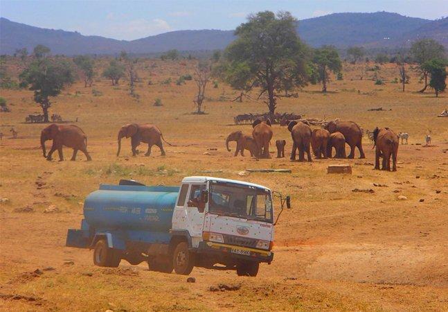 Ele dirige horas diariamente para levar água aos animais silvestres que sofrem com a seca no Quênia