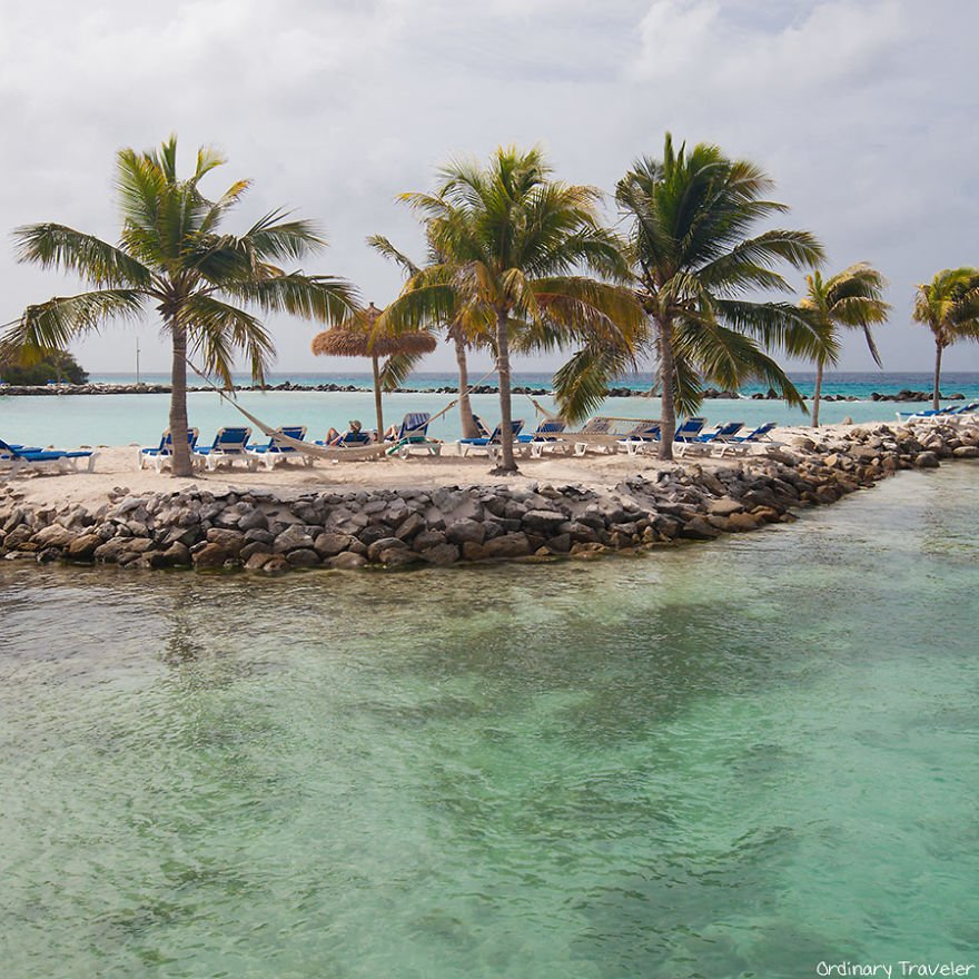 This-Beach-in-Aruba-is-Full-of-Friendly-Pink-Flamingos-57b2afb67291d__880