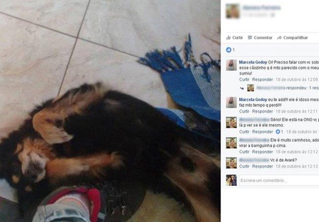 Ela encontrou seu cãozinho perdido há 6 anos ao ver uma foto na internet