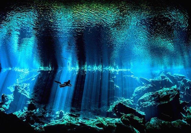 Conheça as vencedoras deste incrível concurso de fotografia submersa