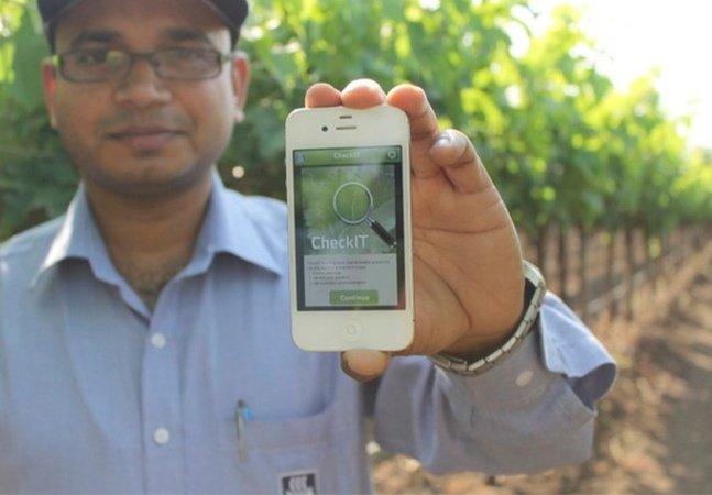 App gratuito identifica deficiências de nutrientes para sua horta ou plantação crescer mais saudável