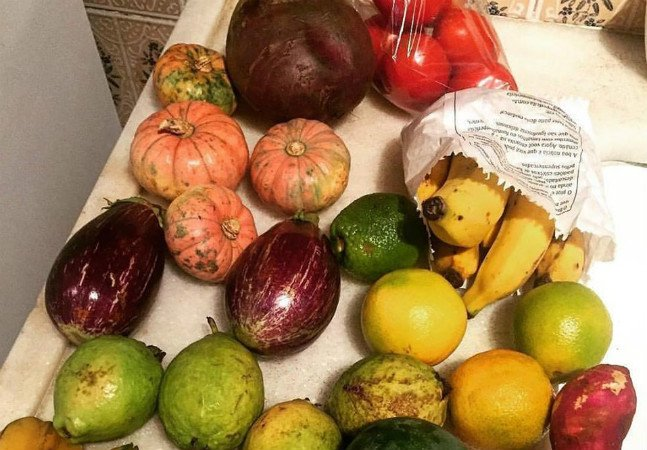Eles entregam frutas e legumes saudáveis que iriam para o lixo por serem diferentes
