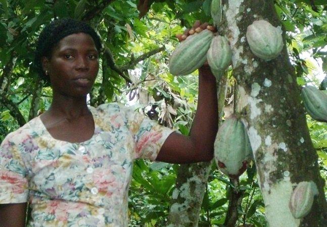 Conheça Vida, uma produtora de cacau no Gana que está usando métodos inovadores pra preservar as florestas