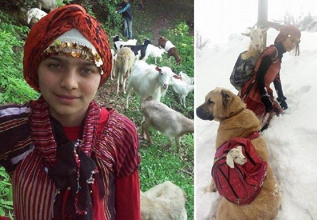 As imagens desta garota e seu cão resgatando uma cabra e seu filhote vão melhorar o seu dia
