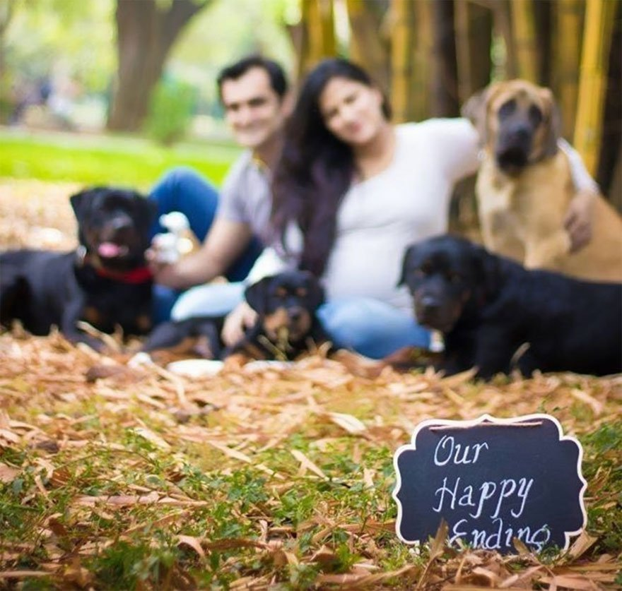 pregnant-couple-dogs-photoshoot-19