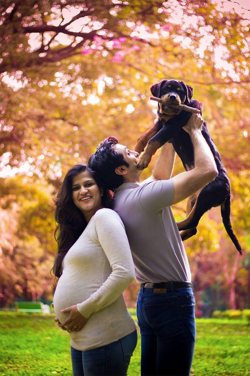 pregnant-couple-dogs-photoshoot-20