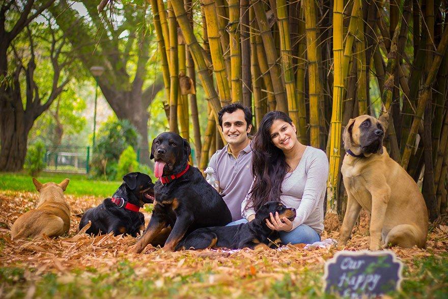 pregnant-couple-dogs-photoshoot-3