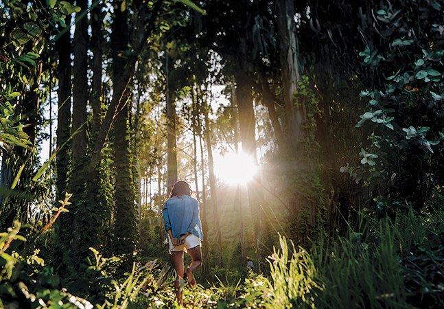 O que é o 'banho de floresta' e por que precisamos incorporá-lo na nossa rotina