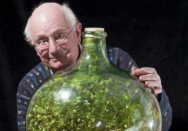 Homem cultiva jardim em garrafa, que segue verde e vivo sem receber água desde 1972