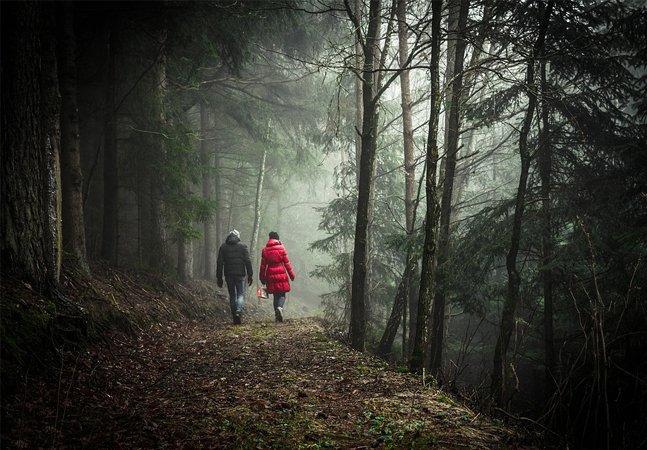 Cheiro de mato: odores emitidos pela natureza podem evitar estresse e câncer