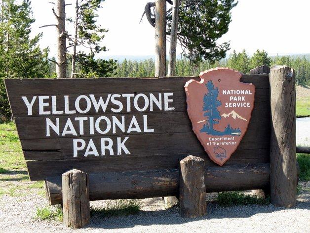 YellowstoneParkSons1