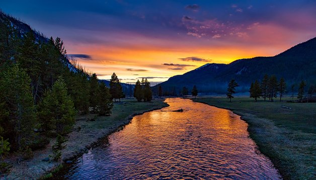 YellowstoneParkSons4