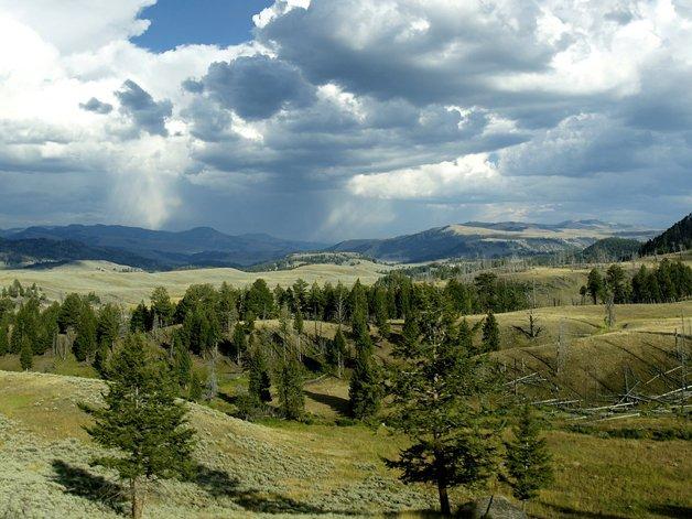 YellowstoneParkSons5