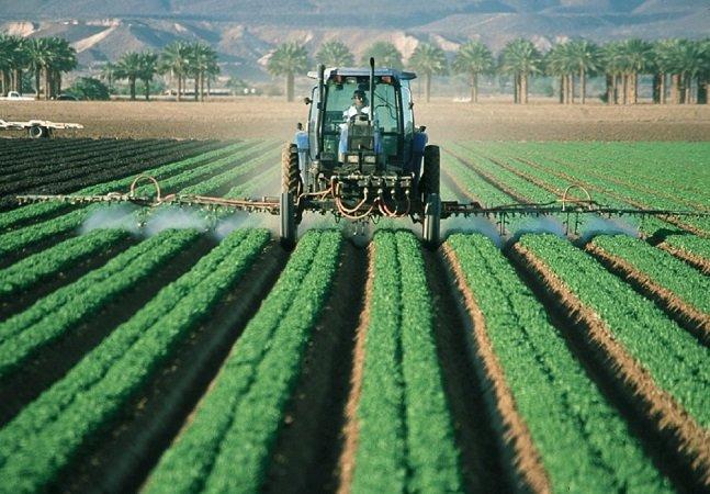 ONU desmente mito de que pesticidas são necessários para alimentar população mundial