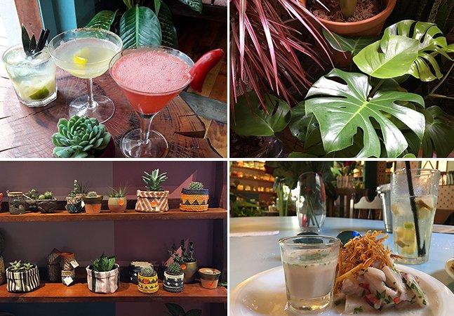 Botanique: o café que reúne plantas, bons drinks e comida latina em Curitiba