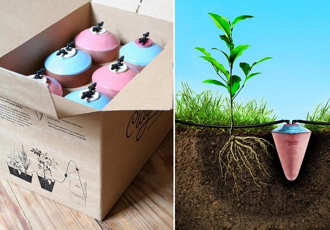 Dispositivo permite que jardins e hortas se auto irriguem com a quantidade certa de água