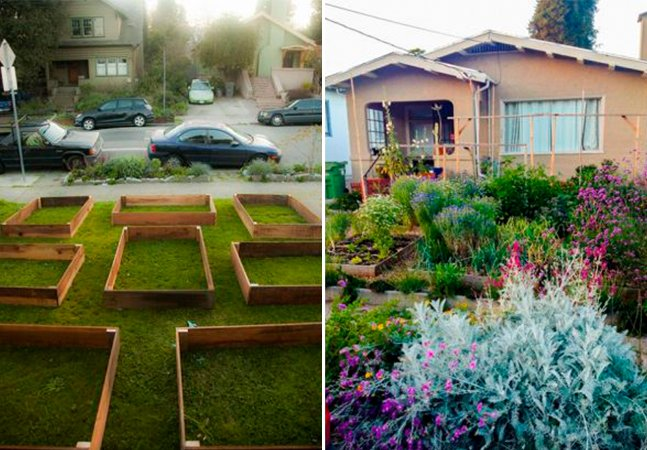 Ele transformou seu jardim em horta para promover a interação entre os vizinhos