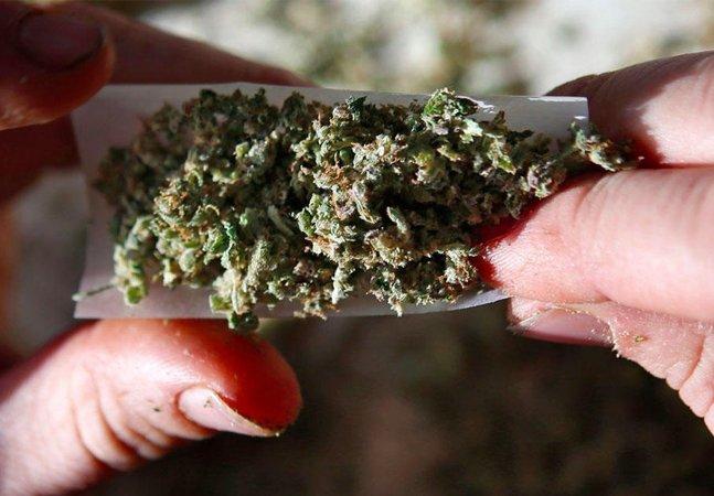 Porta de saída: clínicas testam maconha no tratamento de vício em drogas pesadas