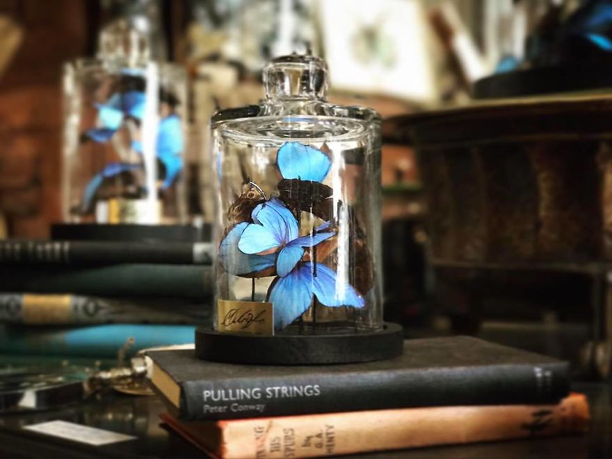 I-started-making-paper-butterflies-to-help-me-grieve-for-the-loss-of-my-grandmother-58f0f4a8071dc__880