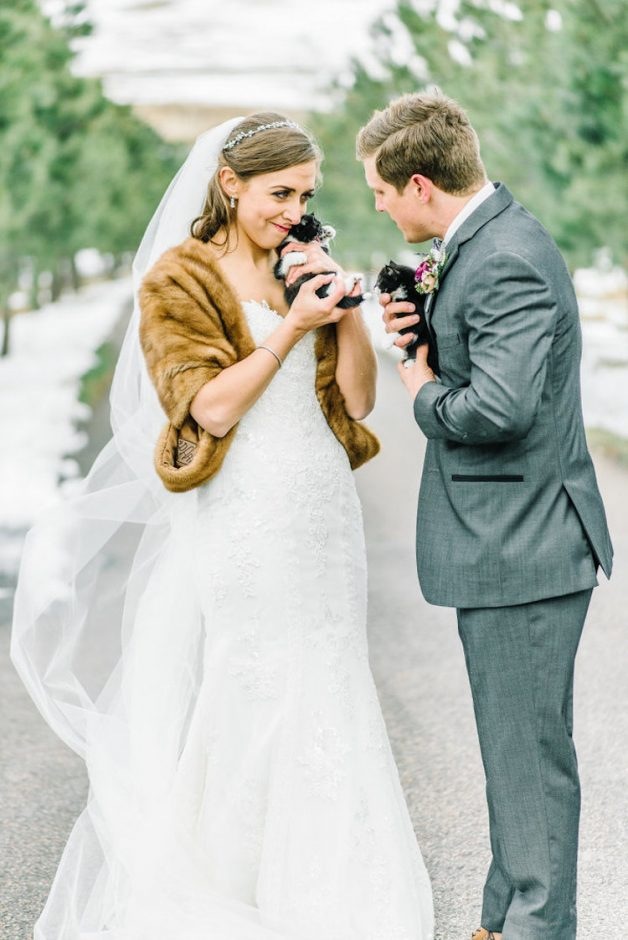 kitten-wedding-10