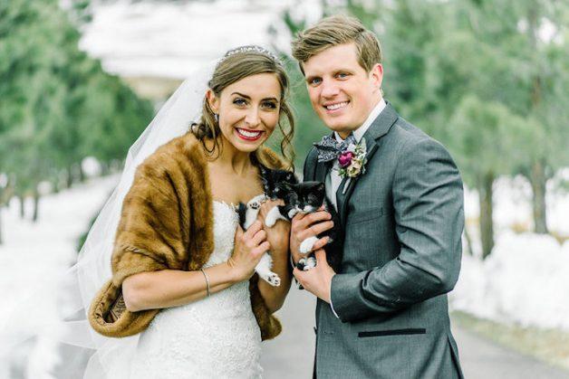 kitten-wedding-2-2