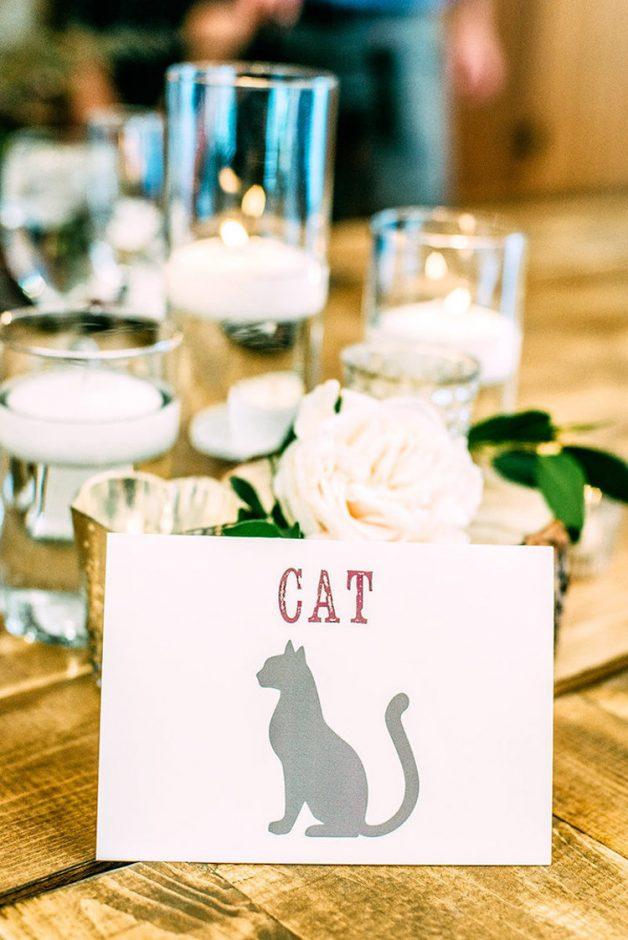 kitten-wedding-7