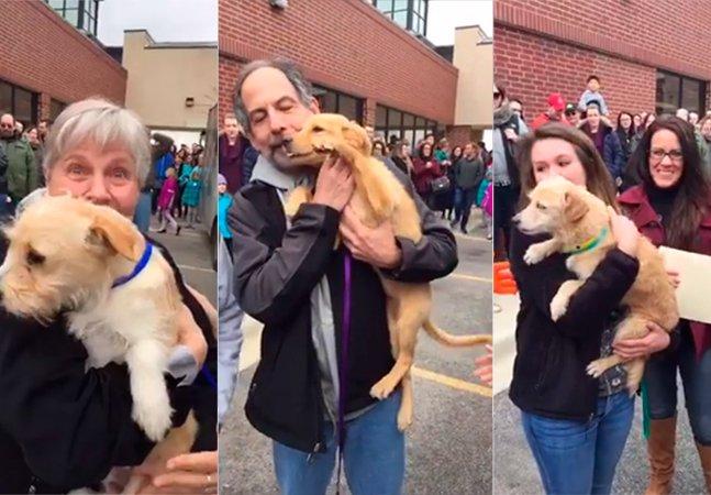 Vídeo tocante mostra o momento em que cachorros que seriam sacrificados encontram novas famílias