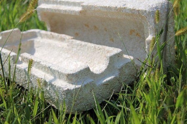 mushroom_packaging-hero.jpg__1500x670_q85_crop_subsampling-2