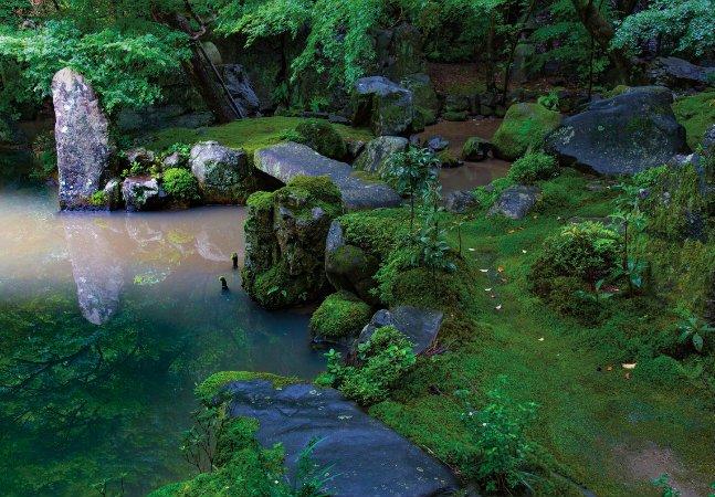 Esses jardins vão te deixar com vontade de embarcar para o Japão agora