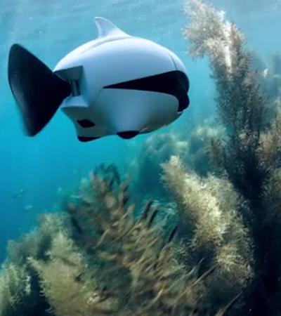 Como funciona o 'peixe biônico', o primeiro drone submarino