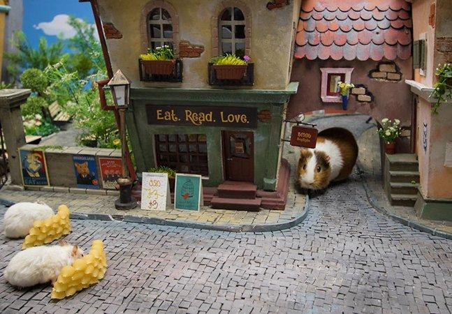 Agência cria uma maravilhosa cidade em miniatura para hamsters