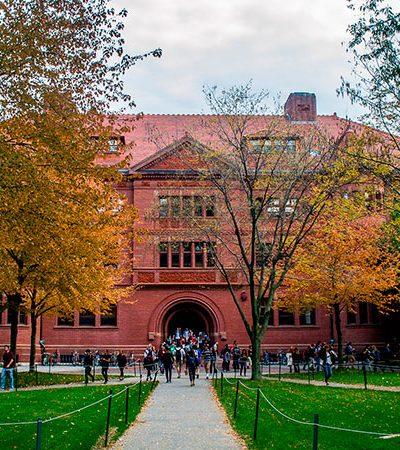 Harvard decide vetar alunos que fizeram postagens obscenas ou racistas