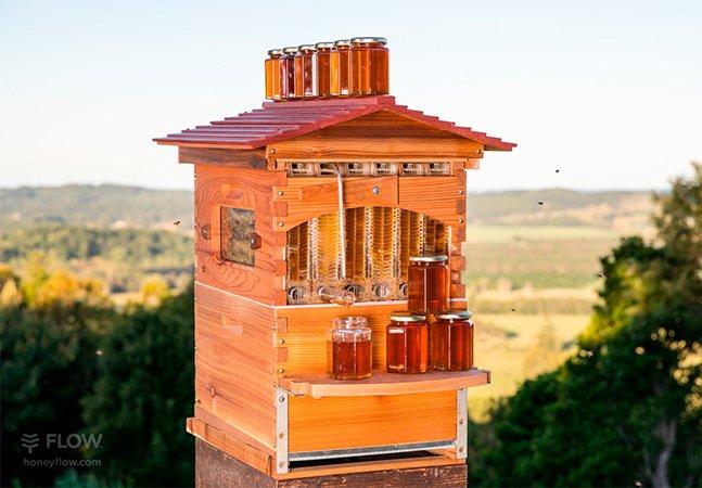 Sistema inteligente obtém mel de uma maneira mais segura, para as abelhas e para as pessoas